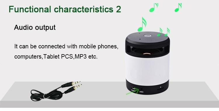 Bluetooth Speaker Charateristics 2